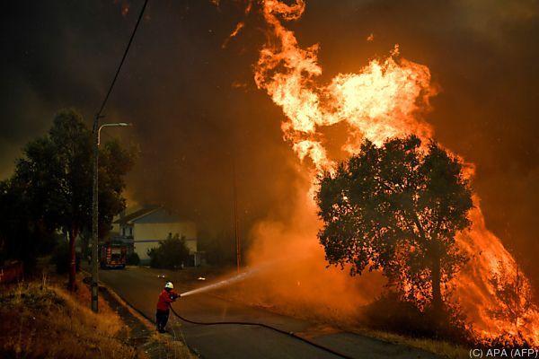 Feuerwehr im Kampf gegen Waldbrand im Dorf Pucarica