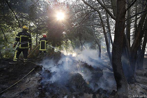 Feuerwehrleute kämpfen gegen Schwelbrände in Pietracorbara