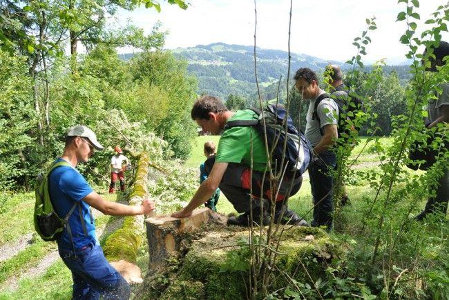 Väter und Kinder erkundeten mit Experte Helmut Muxel die heimischen Baumarten.