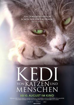 Kedi – Von Katzen und Menschen – Trailer und Kritik zum Film