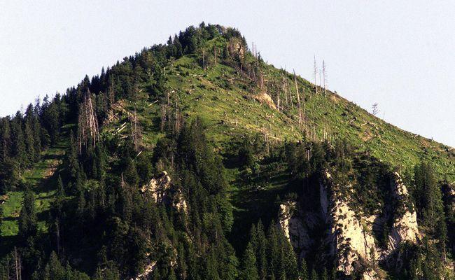 Die Bergrettung begleitete einen entkräfteten Wanderer ins Tal.