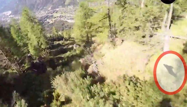 Der Wingsuit-Pilot hat den Absturz überlebt.
