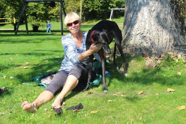 Auch Joke und Grace genossen das herrliche Wetter beim Hundebadetag am Naturbadesee Untere Au.