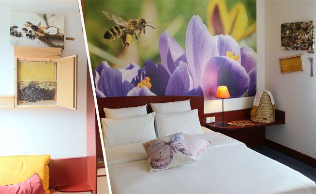 """Im """"Novotel Suites Wien City Donau"""" lassen sich Bienen bei der Arbeit beobachten."""