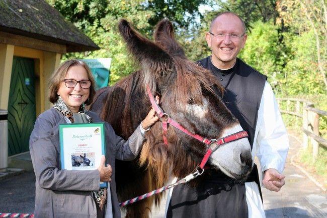 (v.l.) Direktorin des Tiergartens Schönbrunn Dagmar Schratter, ein Poitou-Esel und Pater Karl Wallner