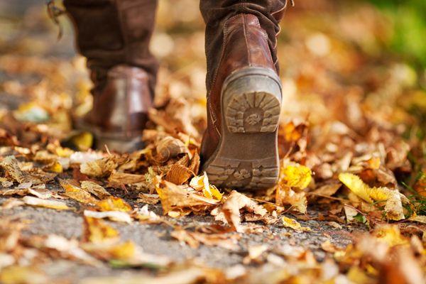 Vorsicht vor feuchten Straßen und nassen Laubteppichen