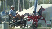 Roboterpferd von Ländle-Tüftler sorgt für Aufsehen